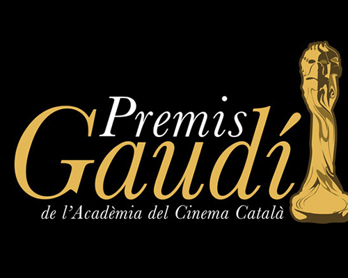 VII Gaudí Awards' rules and guidelines